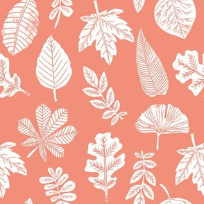 Leaves botanical nature walk autumn fall spring summer pattern coral