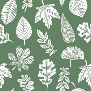 Leaves botanical nature walk autumn fall spring summer pattern darker green