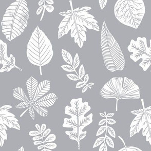 Leaves botanical nature walk autumn fall spring summer pattern grey