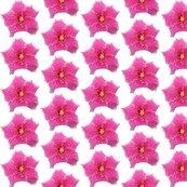 Rpinkflower_shop_thumb