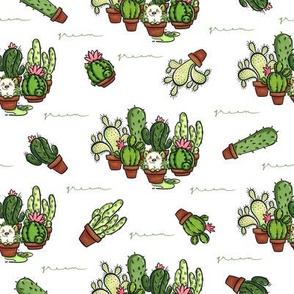 Green - Cactus and Hedgehog