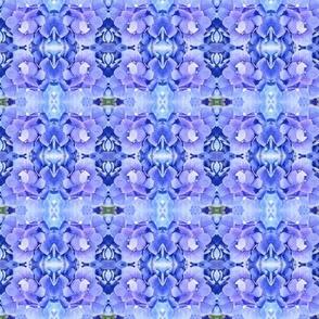 Violet Blue Maze