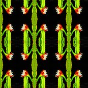 Rsaturatedcactus_shop_thumb