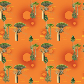 Strange Trees of the World