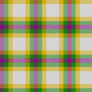 Mardi Gras Plaid 3