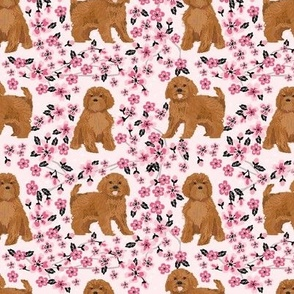 ruby Cavoodle cavapoo dog breed fabric cherry blossom