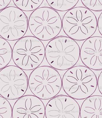 Sanddollars in Purple
