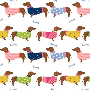 Dachshund red coat dog breed pet fabric pattern sweater
