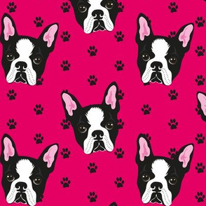 BOSTON-TERRIER-PATTERN-FUXIA