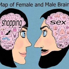 map of female and male brain, adult content, large scale, pink blue black