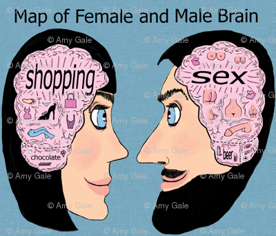 map of female and male brain, adult content, small scale, pink blue black