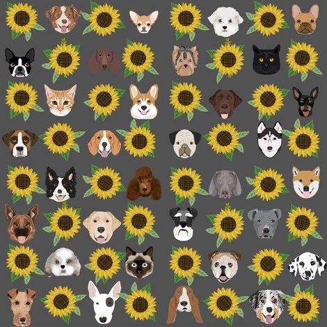 Rrrdog_heads_sunflowers_grey_shop_preview
