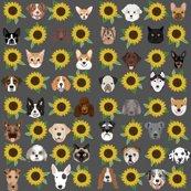 Rrrdog_heads_sunflowers_grey_shop_thumb