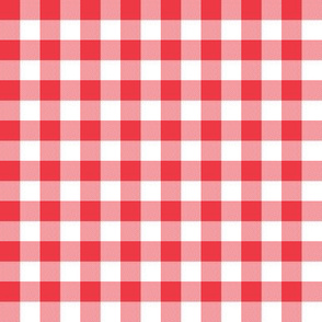 "1/2"" strawberry gingham check"