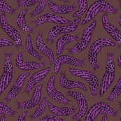 Purple Leopard Slugs