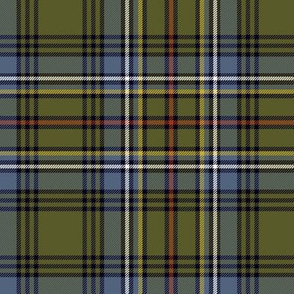 "Cockburn tartan #1, 6"" weathered"