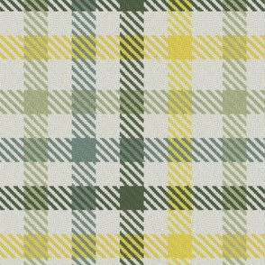 Four Color Bayeux Palette Gingham Plaid Green