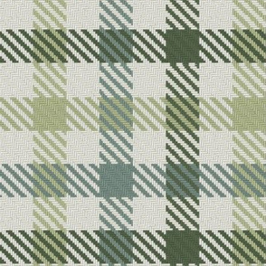 Tri Color Bayeux Palette Gingham Plaid Green