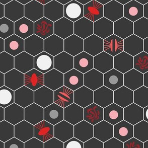Cell Division Red Pink Gray on Dark Gray Background