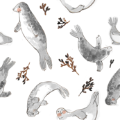Seal Dance