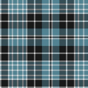 "Clergy tartan, 6"" grey/teal"