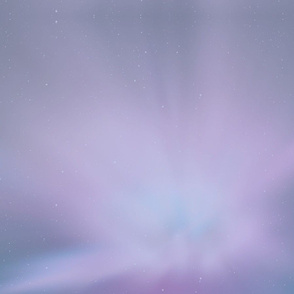 Muted Purple Star Burst