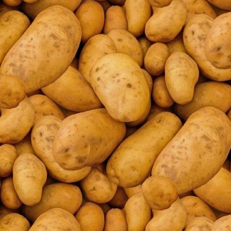 Rpotatoes-411975_960_720_5_gross_shop_preview