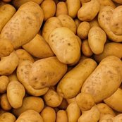 Rpotatoes-411975_960_720_5_gross_shop_thumb