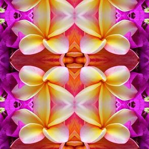 Hawaiian Plumeria Flower Pattern