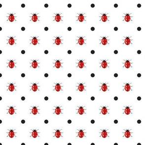 LadyBug with Black Dots on White