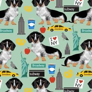 doxie piebald nyc - black and white dachshund travel dog - mint