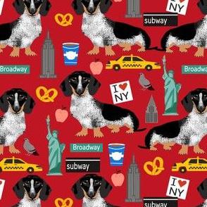 doxie piebald nyc - black and white dachshund travel dog - red