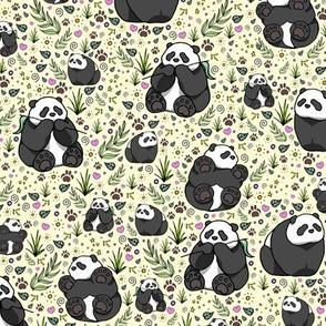 Pandas on Yellow