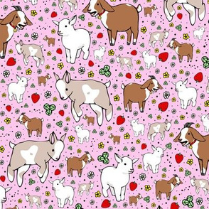 Goats on Pink