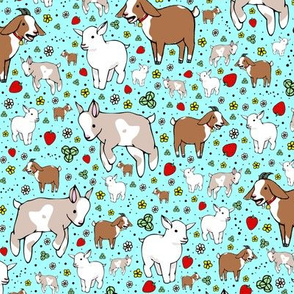 Goats on Blue