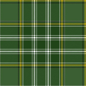 "Currie of Balilone tartan, 6"" muted"