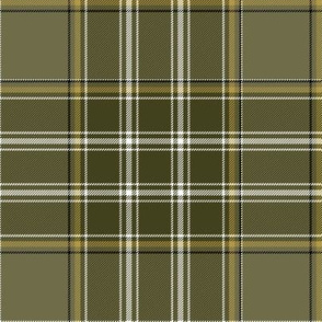"Currie of Balilone tartan, 6"" weathered"