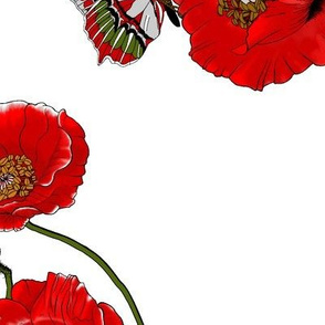 RED_Poppies_with_butterflies_ROTATED_90deg