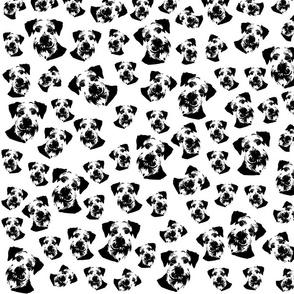 Schnauzer black white fabric