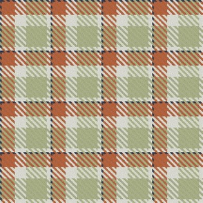 Terra Cotta Light Green Linen and Navy Bayeux Palette Plaid