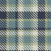 Navy Blue Gray and Light Green Bayeux Palette Plaid
