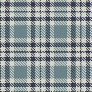Navy Blue Gray and Linen Bayeux Palette Plaid