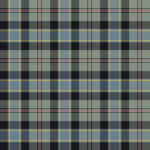 "Ogilvie hunting tartan, 6"" weathered"