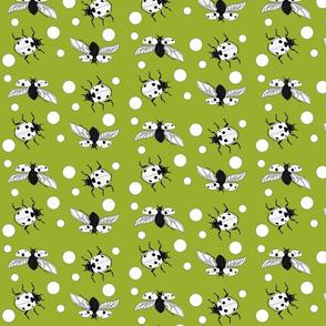 Ladybird_polka_dot_green