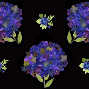 Hydrangea dark Floral