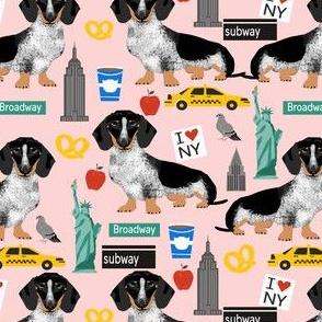 doxie piebald nyc - black and white dachshund travel dog - pink