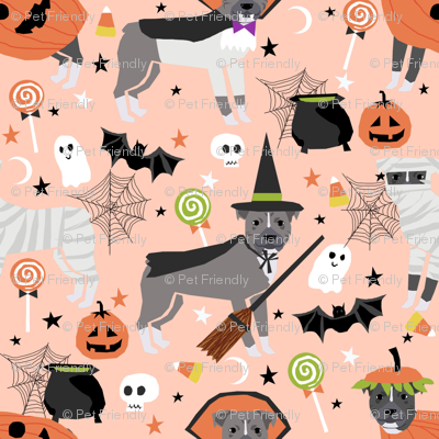 Pitbull halloween costume dog fabric vampire ghost mummy peach