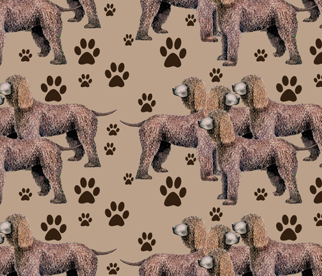 987431_rrIrish_Water_Spaniel__with_pawprints fabric by dogdaze_ on Spoonflower - custom fabric