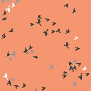Sheba Flock (apricot)