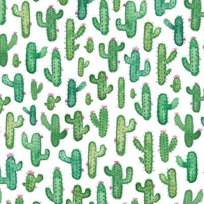Prickly Watercolour Cacti